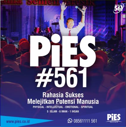 training pies 561